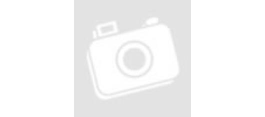 Ninebot KickScooter MAX G30 és Xiaomi Electric Scooter Pro 2 első lámpák