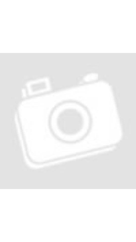 Ninebot KickScooter MAX G30 stoppie a Hősők terén Budapesten