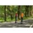 Kép 8/12 - Ninebot KickScooter E25E elektromos roller életmód erdő